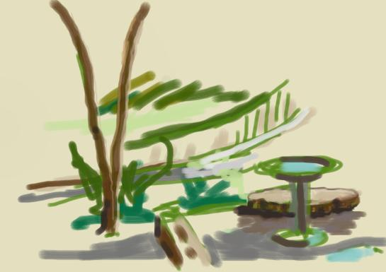 A rough sketch of a landscape with a bird bath and a  young dogwood tree.