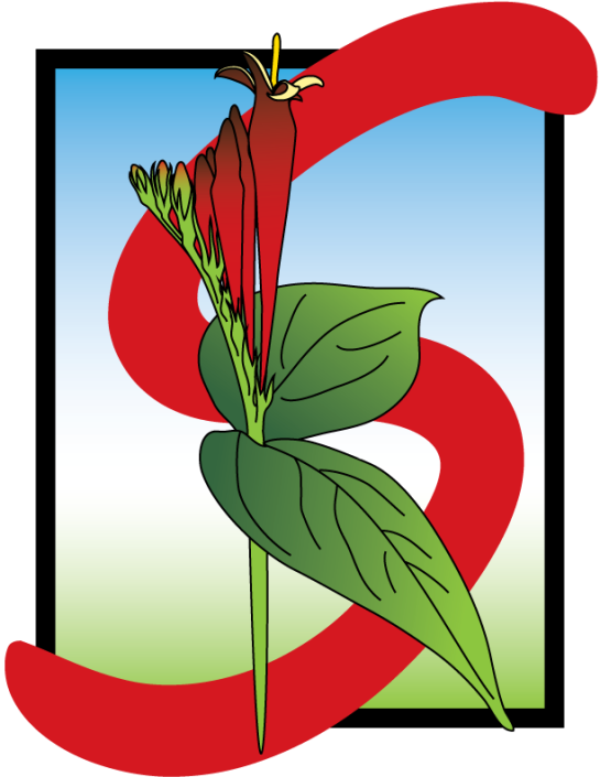 An illustration of the letter S combined with Spigelia.