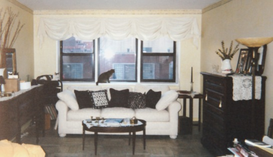 The interior of the living room of an apartment.