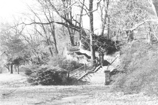 A stone staircase rising alongside a hill in a park in Philadelphia.