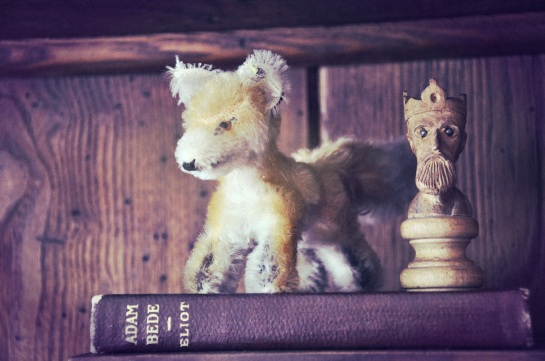 A small stuffed animal, a copy of the book Adam Bede, a chess piece.