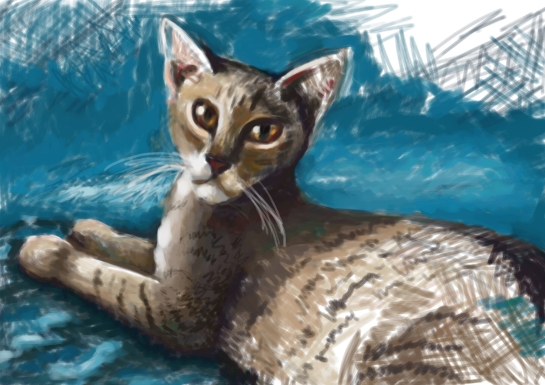 A sketch of a tabby cat.