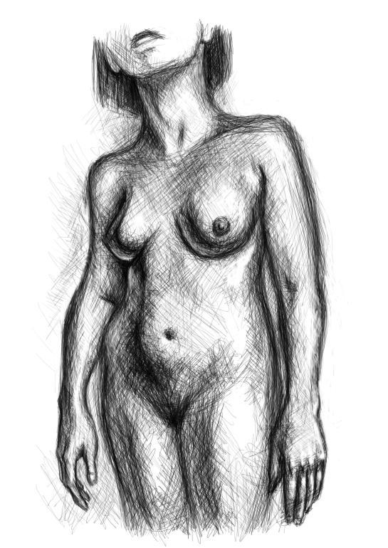A drawing of a woman's torso.