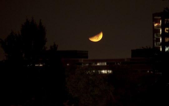 quarter-moon