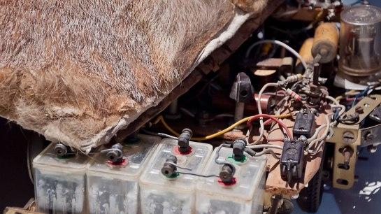 Renard-Electronique-ofw
